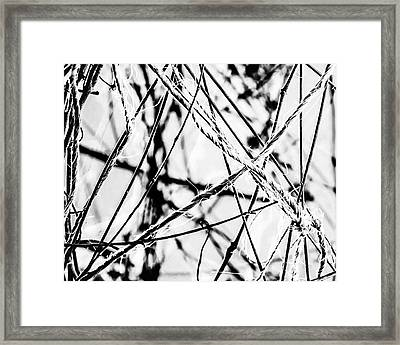 The Tie That Binds Framed Print