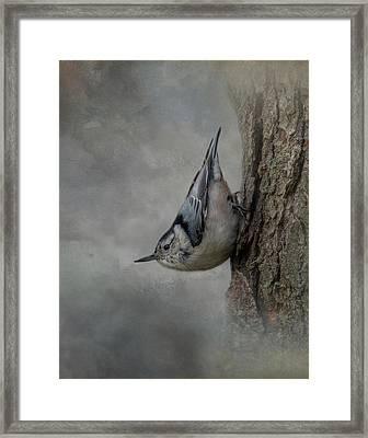 The Tree Walker Framed Print