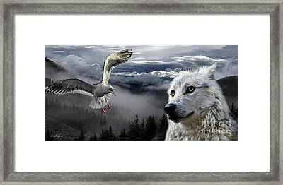 The Wolf And The Gull Framed Print