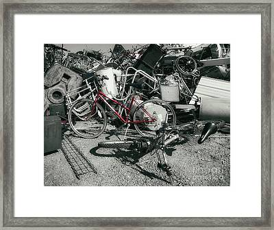 Things That Cycle  Framed Print by Steven Digman