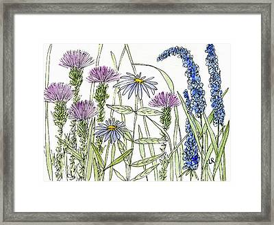 Thistle Asters Blue Flower Watercolor Wildflower Framed Print