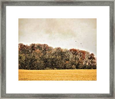 Three Crows And Golden Field Framed Print