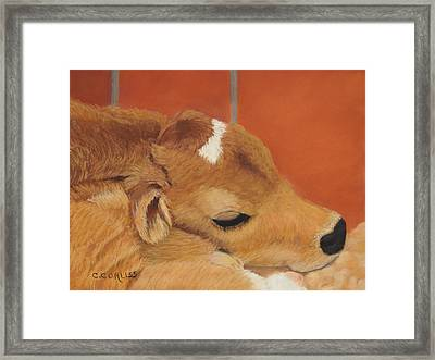 Three Hours Old Framed Print