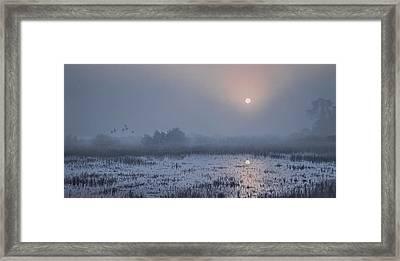 Through The Fog Framed Print