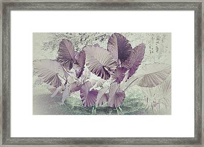 Borneo Giant Abstract Framed Print