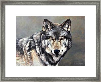 Timber Wolf By Alan M Hunt Framed Print