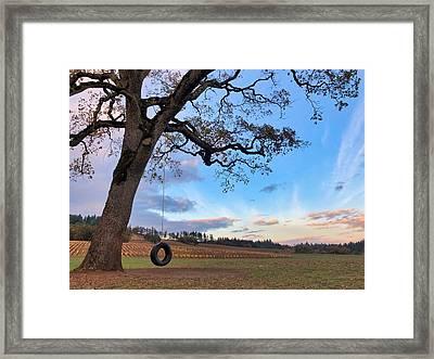 Tire Swing Tree Framed Print