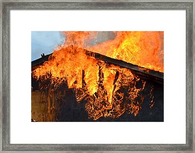 Framed Print featuring the photograph Too Hot by Carl Young