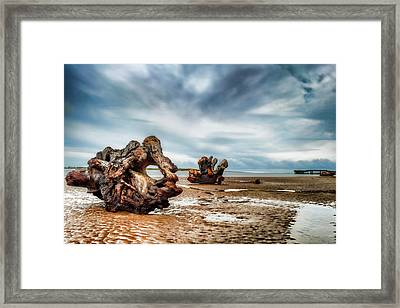 Tossed Up On The Beach Framed Print