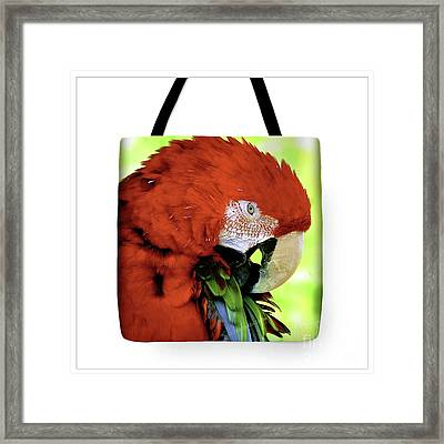 Tote Bags Framed Print