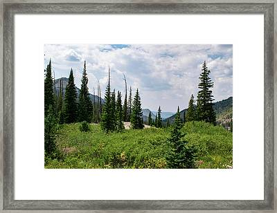 Trail To Gilpin Lake Framed Print
