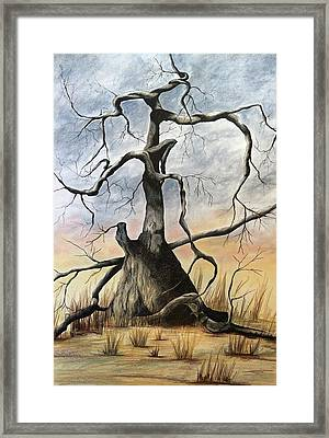Tree 1 Framed Print