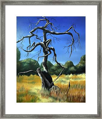 Tree 3 Framed Print