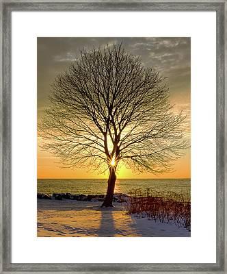 Tree Framed Sunrise New Hampshire Framed Print