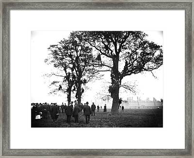 Tree-top View Framed Print by Topical Press Agency