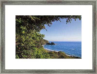 Trees And Ocean Framed Print