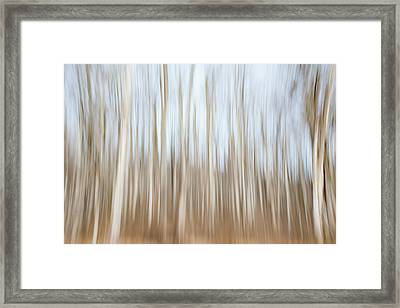 Trees On The Move Framed Print