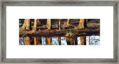 Framed Print featuring the photograph Trees Reflected At Sunrise by Jerry Sodorff