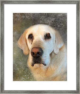 Tribute To Leroy 2 Framed Print