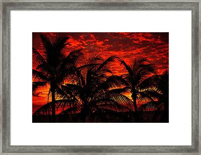 Tropical Sunrise Framed Print