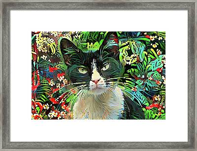 Tucker The Tuxedo Cat Framed Print