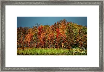 Tug Hill Colors Framed Print