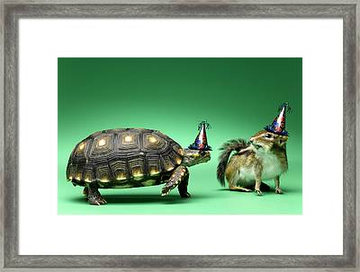 Turtle And Chipmunk Wearing Party Hats Framed Print by Jeffrey Hamilton