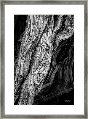 Framed Print featuring the photograph Untitled Viii Bw by David Gordon