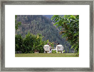 Vacation On Strawberry Hill Framed Print