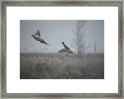 Framed Print featuring the painting Valley Pheasants by Peter Mathios