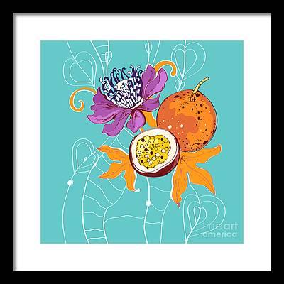 Passion Fruit Flower Framed Prints