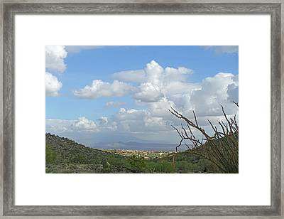 Framed Print featuring the photograph Verdant Valley 3 by Lynda Lehmann