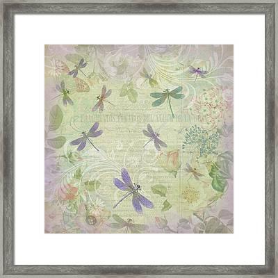 Vintage Botanical Illustrations And Dragonflies Framed Print