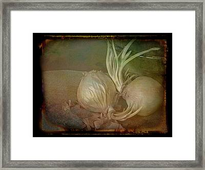 Framed Print featuring the mixed media Vintage Onions 3 by Lynda Lehmann