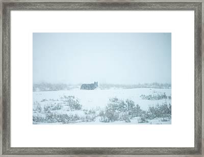 W29 Framed Print
