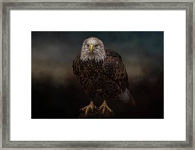 Waiting On The Storm Framed Print