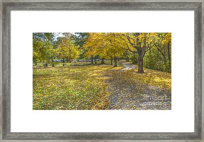 Walk In The Park @ Sharon Woods Framed Print