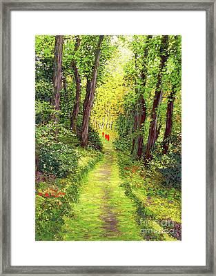 Walking Meditation Framed Print