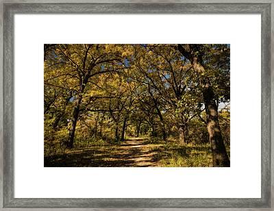 Framed Print featuring the photograph Walking Through Fall by Scott Bean