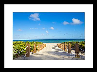 Florida Scenery Photographs Framed Prints