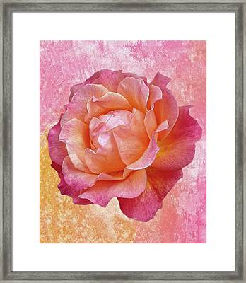 Warm And Crunchy Rose Framed Print