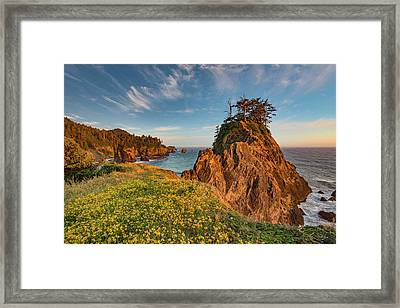 Warm And Peaceful Coast Framed Print by Leland D Howard