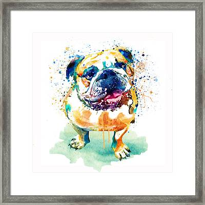 Watercolor Bulldog Framed Print