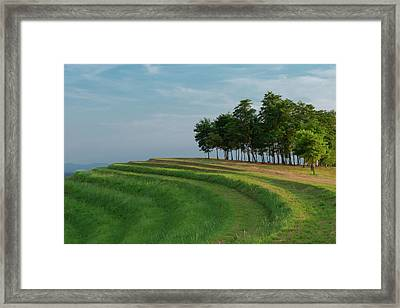 Framed Print featuring the photograph Waves Of Grass by Davor Zerjav