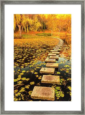 Way In The Lake Framed Print