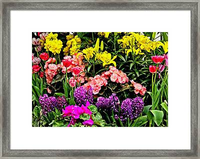 We Are All Here For You Framed Print