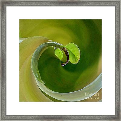 Wellness And Prevention Framed Print