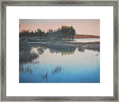 Wetland Reverie Framed Print