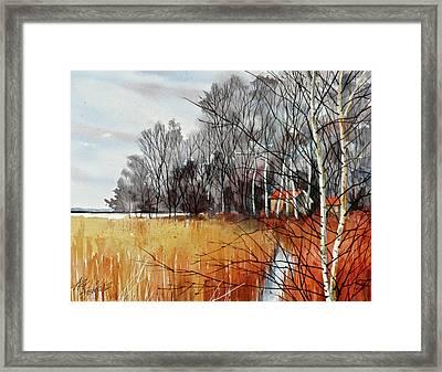 Wetlands Edge Framed Print by Art Scholz