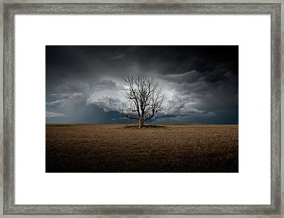 When Dreams Become Reality Framed Print